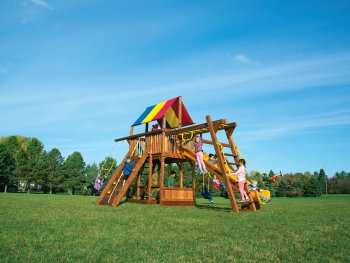 Rainbow Monster club house style swing set